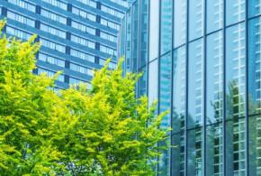 Perspectives Ahead: Nachhaltigkeit in Business, IT und Digitalisierung