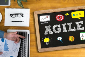 Projektmanagement: Agile Unternehmensentwicklung